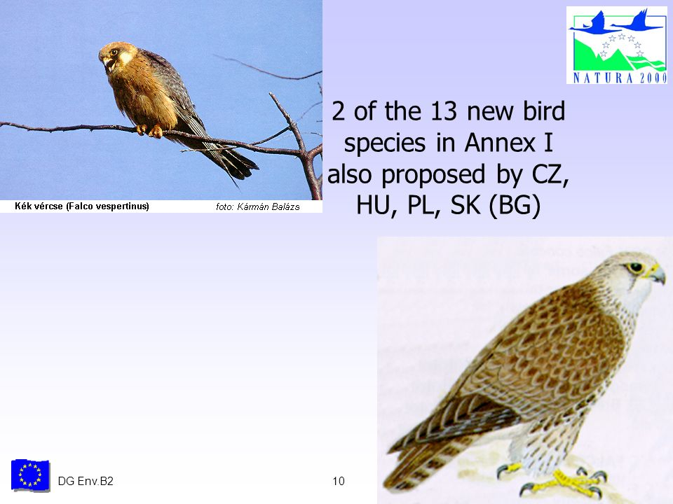 DG Env.B210 2 of the 13 new bird species in Annex I also proposed by CZ, HU, PL, SK (BG)