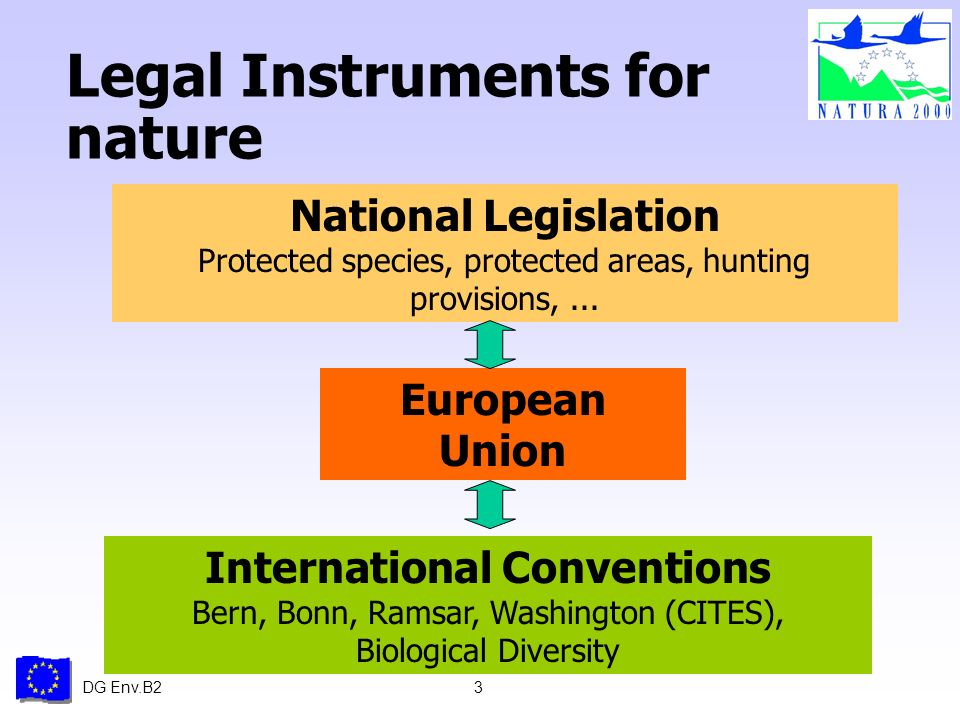 DG Env.B23 Legal Instruments for nature National Legislation Protected species, protected areas, hunting provisions,...
