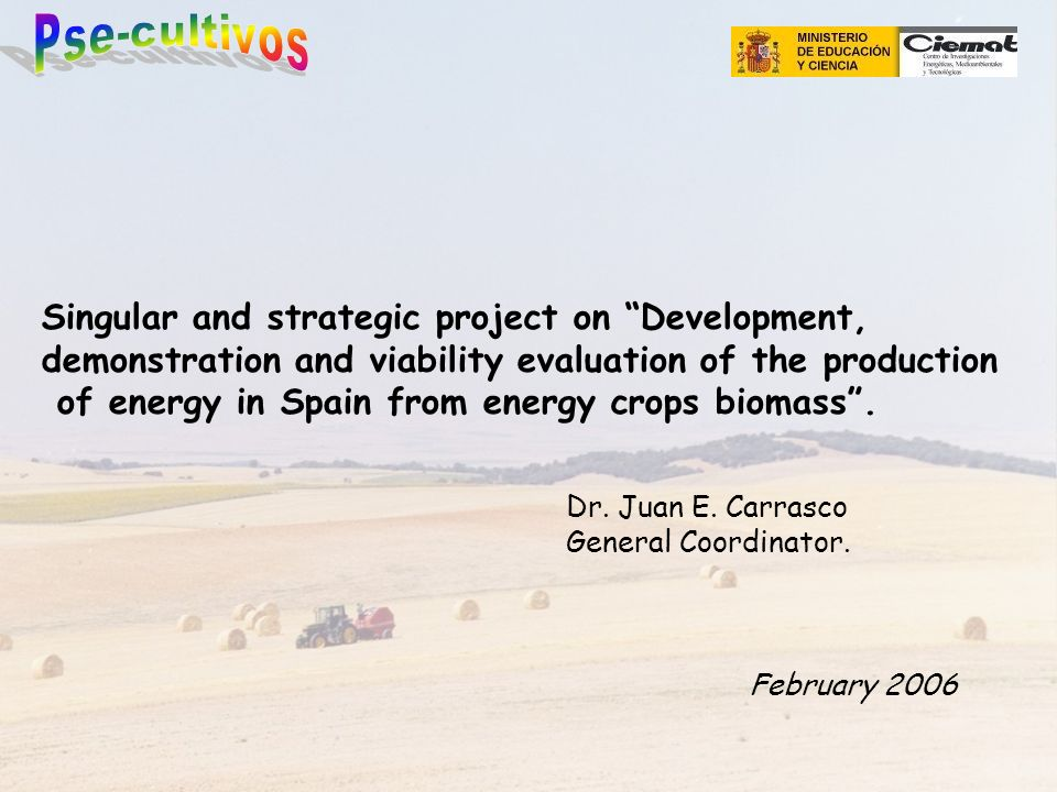 Singular and strategic project on Development, demonstration and viability evaluation of the production of energy in Spain from energy crops biomass.