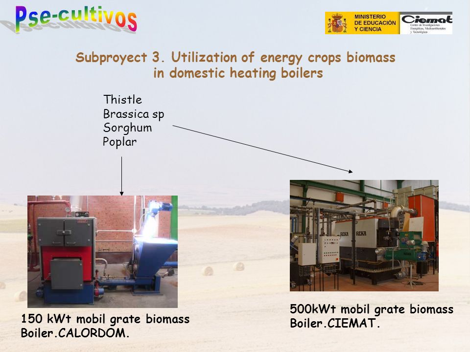 Subproyect 3. Utilization of energy crops biomass in domestic heating boilers Thistle Brassica sp Sorghum Poplar 500kWt mobil grate biomass Boiler.CIE