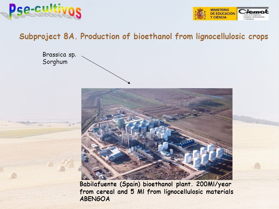 Subproject 8A. Production of bioethanol from lignocellulosic crops Babilafuente (Spain) bioethanol plant. 200Ml/year from cereal and 5 Ml from lignoce