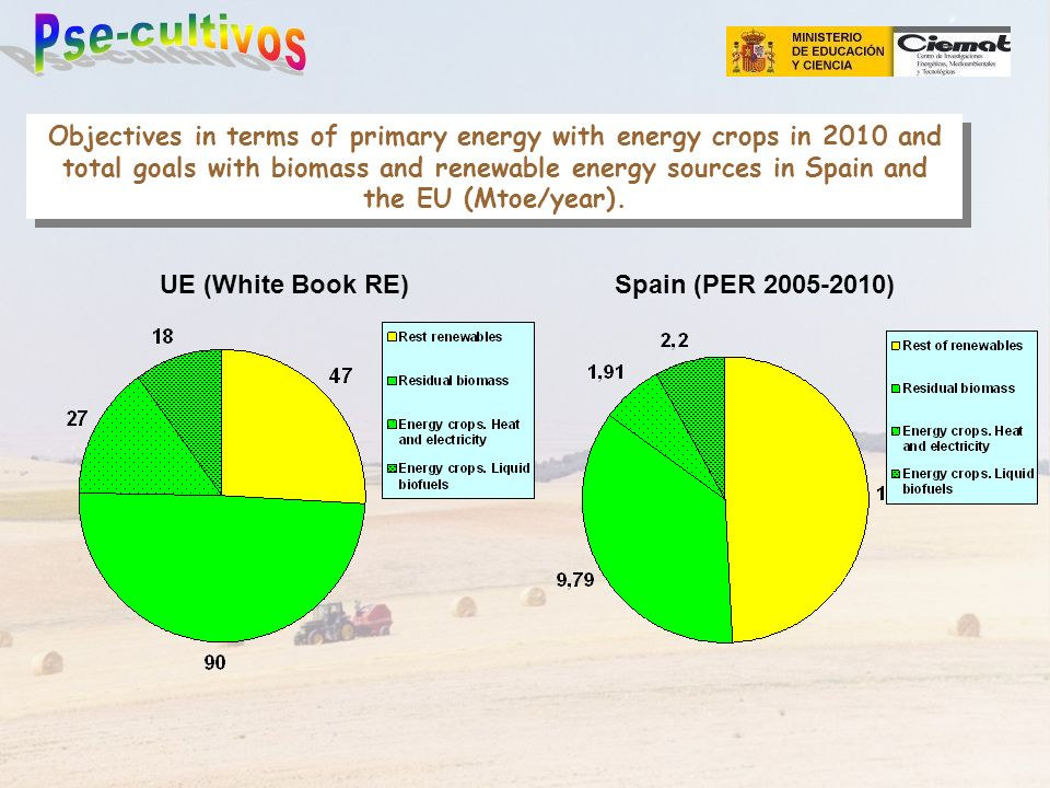 Objectives in terms of primary energy with energy crops in 2010 and total goals with biomass and renewable energy sources in Spain and the EU (Mtoe/ye