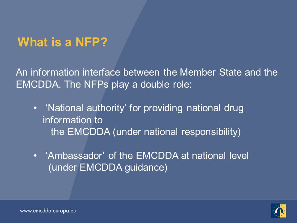 What is a NFP. An information interface between the Member State and the EMCDDA.