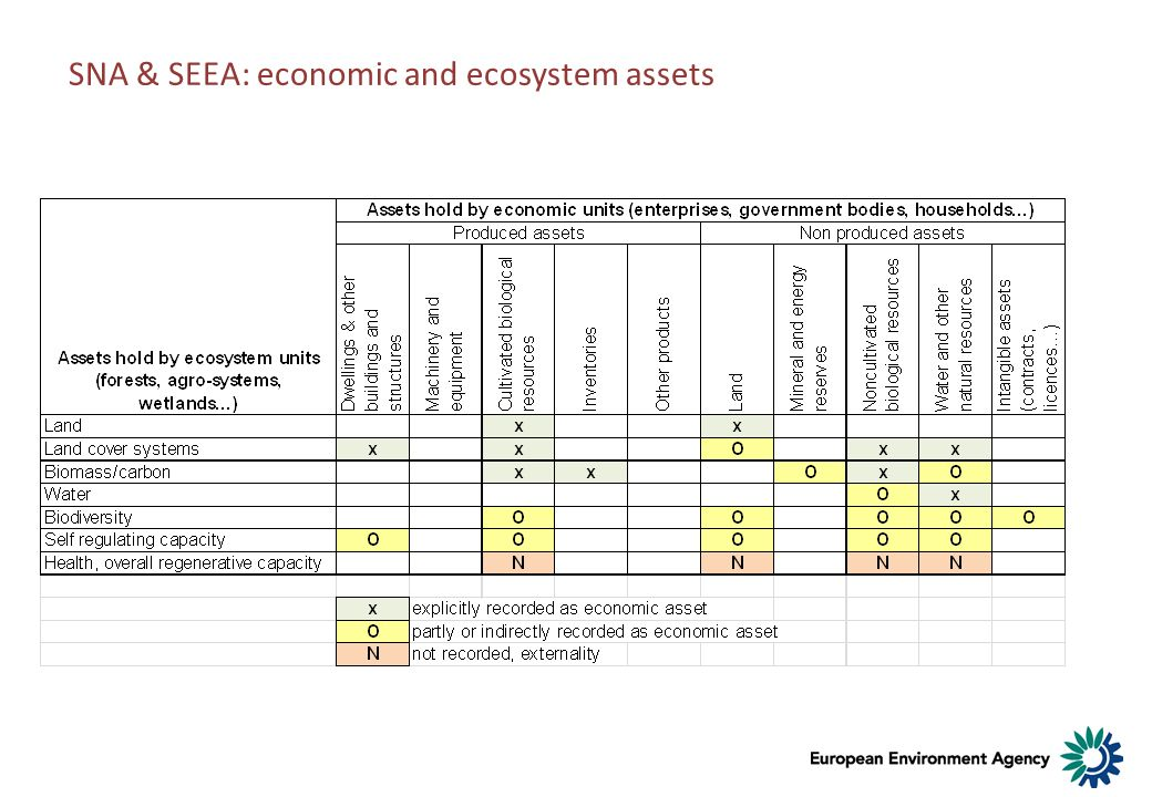 SNA & SEEA: economic and ecosystem assets