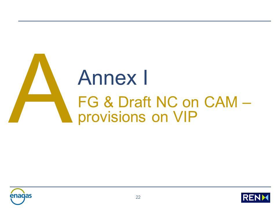 22 A Annex I FG & Draft NC on CAM – provisions on VIP