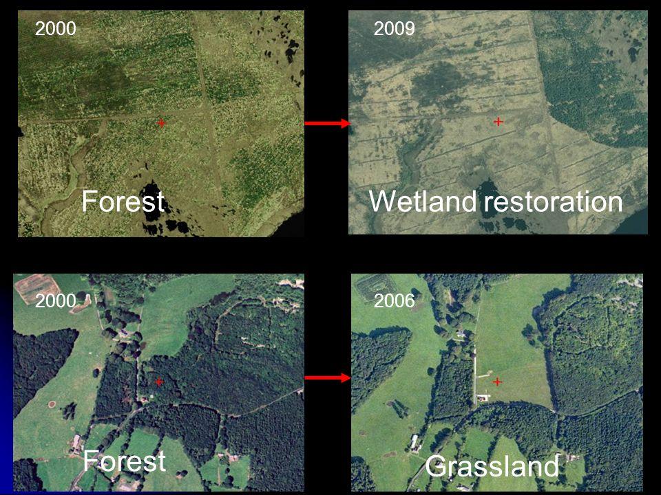 20002009 Wetland restorationForest Grassland 20002006