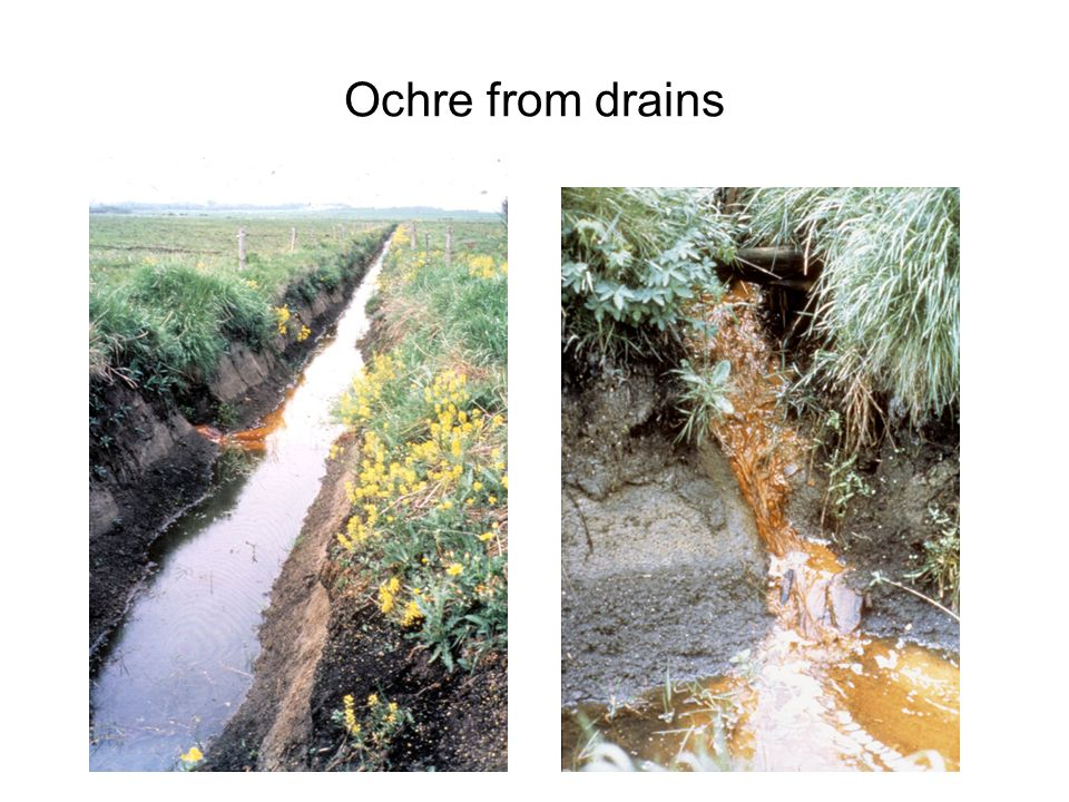 Ochre from drains