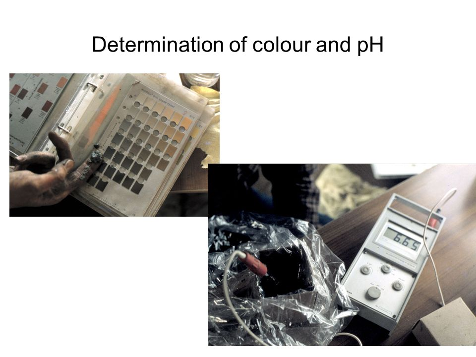 Determination of colour and pH