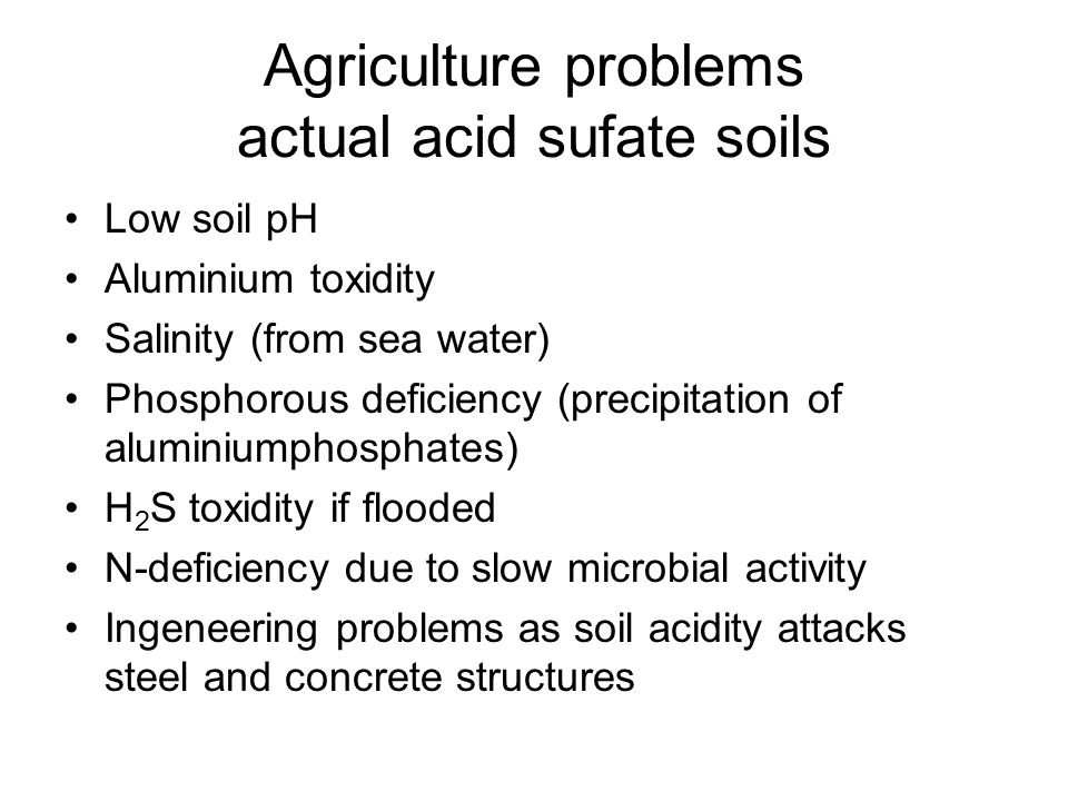 Agriculture problems actual acid sufate soils Low soil pH Aluminium toxidity Salinity (from sea water) Phosphorous deficiency (precipitation of aluminiumphosphates) H 2 S toxidity if flooded N-deficiency due to slow microbial activity Ingeneering problems as soil acidity attacks steel and concrete structures