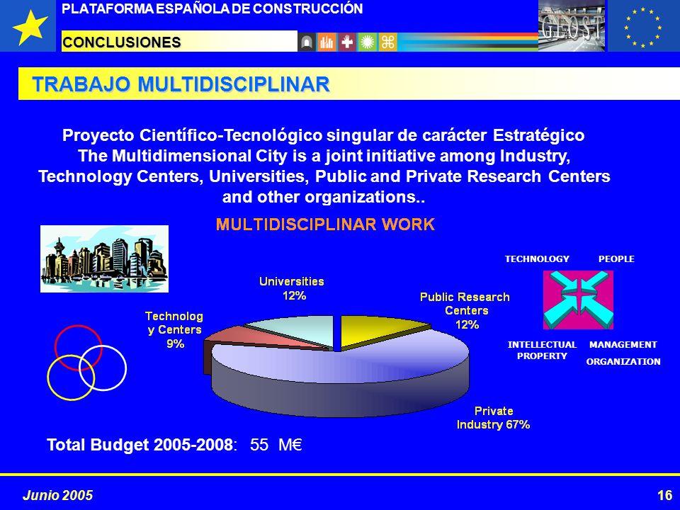 PROYECTOS ESTRATÉGICOS PLATAFORMA ESPAÑOLA DE CONSTRUCCIÓN 16Junio 2005 CONCLUSIONES TRABAJO MULTIDISCIPLINAR Proyecto Científico-Tecnológico singular
