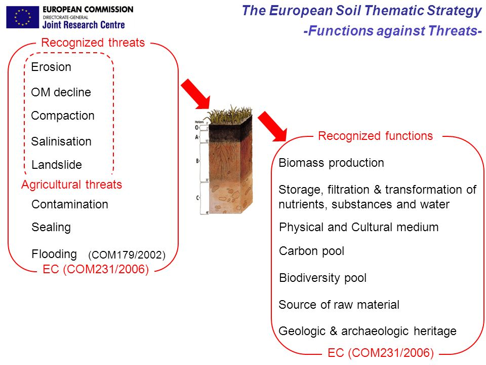 JRC Ispra - IES Carré & Montanarella The European Soil Thematic Strategy -Functions against Threats- Biomass production Storage, filtration & transfor