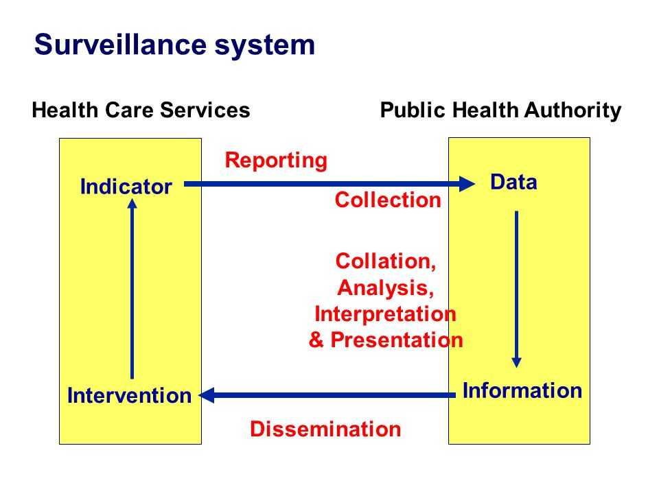 2 Health Care ServicesPublic Health Authority Indicator Data Information Intervention Reporting Collection Collation, Analysis, Interpretation & Presentation Dissemination Surveillance system