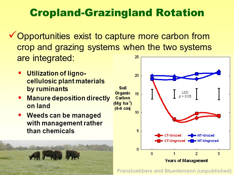 Opportunities exist to capture more carbon from crop and grazing systems when the two systems are integrated: Cropland-Grazingland Rotation Utilization of ligno- cellulosic plant materials by ruminants Manure deposition directly on land Weeds can be managed with management rather than chemicals Franzluebbers and Stuedemann (unpublished)