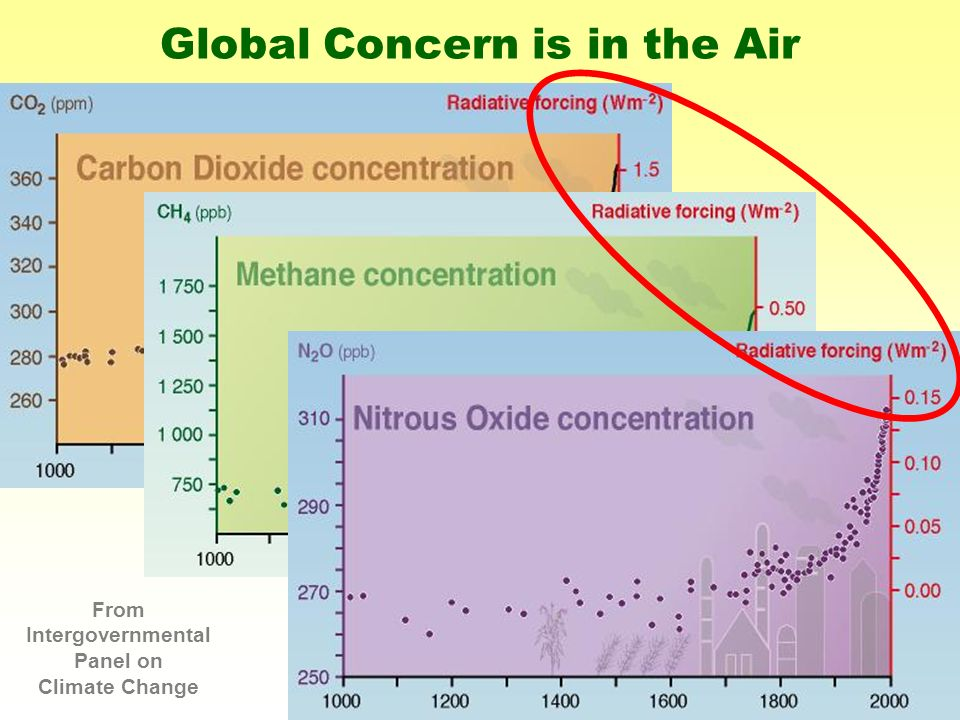 Global Concern is in the Air From Intergovernmental Panel on Climate Change