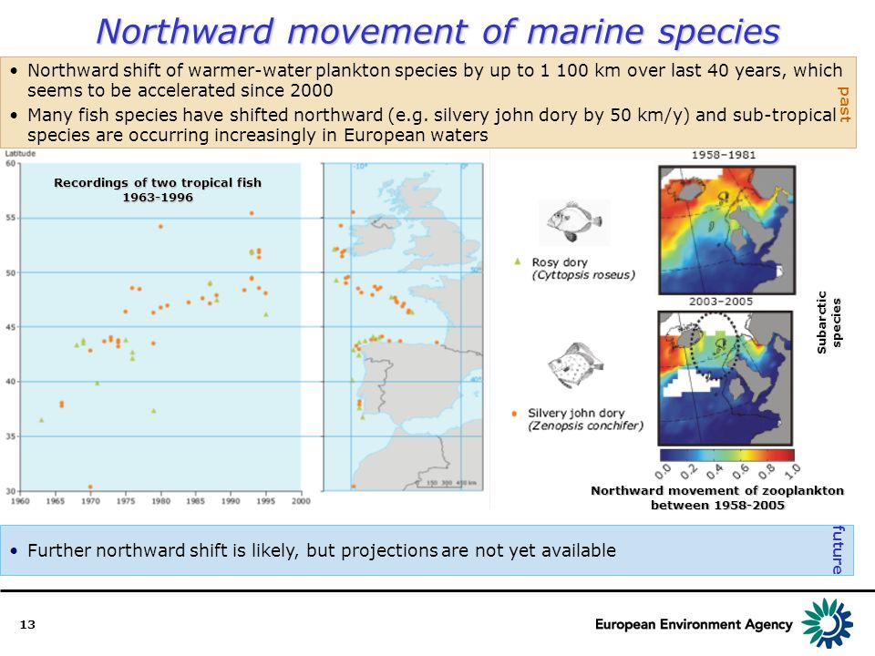 13 Northward movement of marine species Further northward shift is likely, but projections are not yet available Northward shift of warmer-water plankton species by up to 1 100 km over last 40 years, which seems to be accelerated since 2000 Many fish species have shifted northward (e.g.