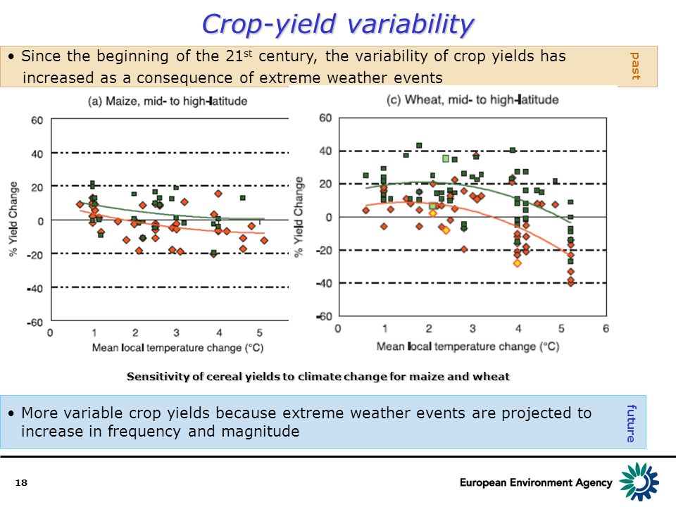 18 Crop-yield variability More variable crop yields because extreme weather events are projected to increase in frequency and magnitude Since the beginning of the 21 st century, the variability of crop yields has increased as a consequence of extreme weather events past future Sensitivity of cereal yields to climate change for maize and wheat