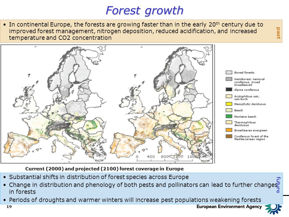 19 Forest growth Substantial shifts in distribution of forest species across Europe Change in distribution and phenology of both pests and pollinators can lead to further changes in forests Periods of droughts and warmer winters will increase pest populations weakening forests In continental Europe, the forests are growing faster than in the early 20 th century due to improved forest management, nitrogen deposition, reduced acidification, and increased temperature and CO2 concentration past future Current (2000) and projected (2100) forest coverage in Europe