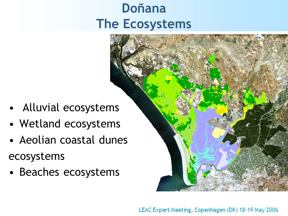 Doñana The Ecosystems LEAC Expert Meeting, Copenhagen (DK) 18-19 May 2006 Alluvial ecosystems Wetland ecosystems Aeolian coastal dunes ecosystems Beaches ecosystems
