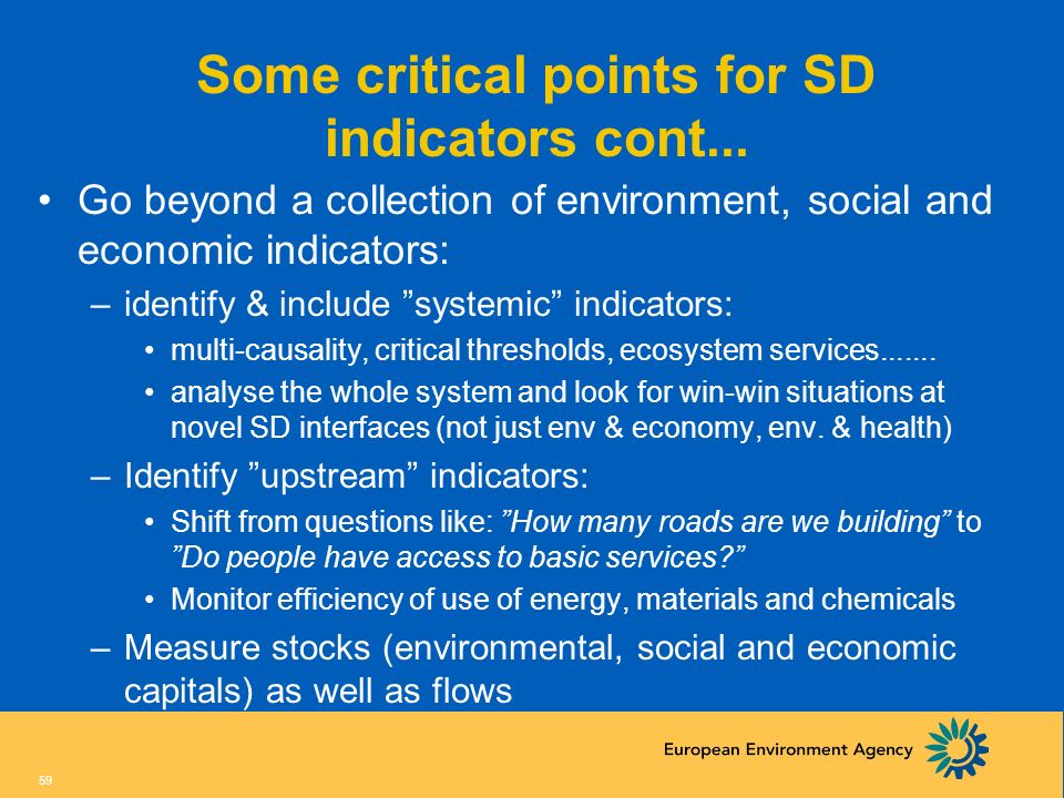 58 Some critical points for SD indicators Identify the right questions at the right moment in the policy cycle –This will lead to the right indicators