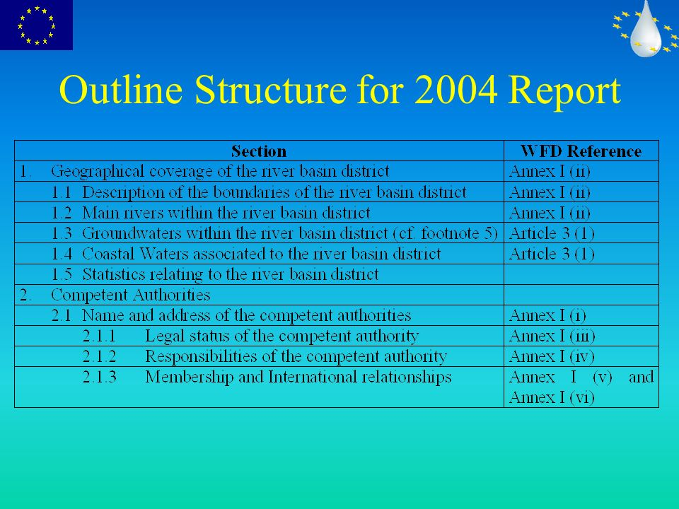 Outline Structure for 2004 Report