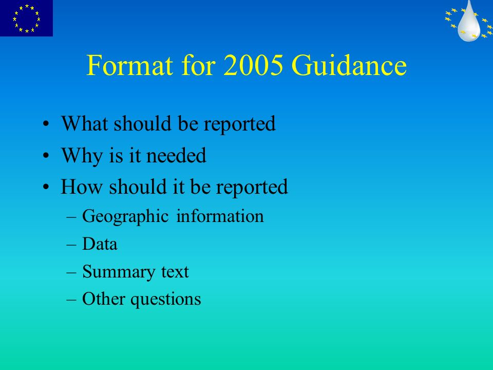 Format for 2005 Guidance What should be reported Why is it needed How should it be reported –Geographic information –Data –Summary text –Other questions