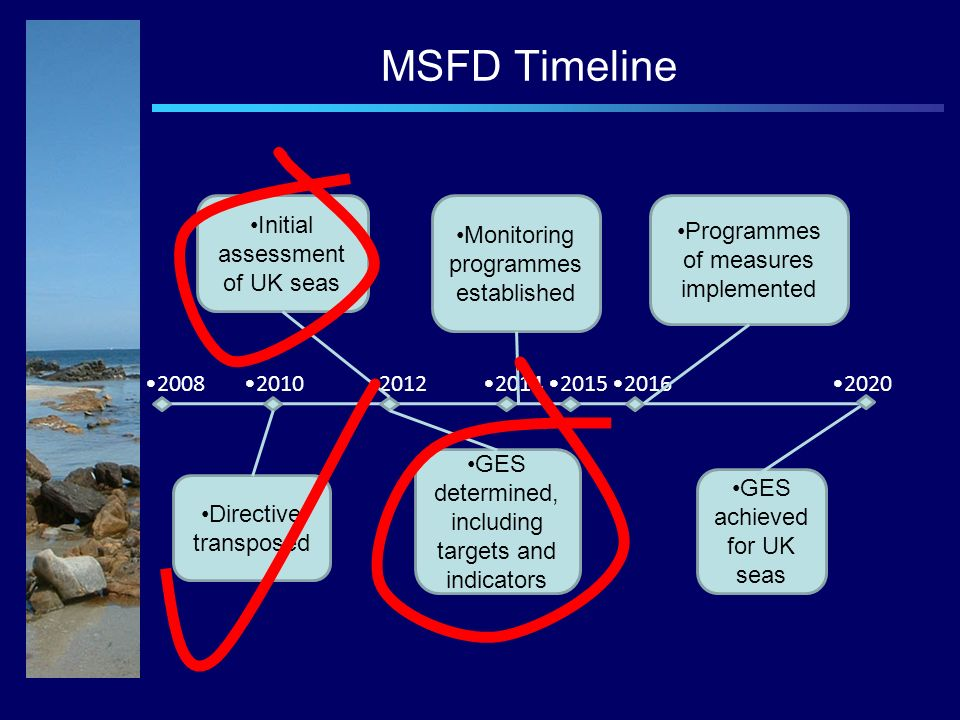 2008202020102012201420152016 Directive transposed Initial assessment of UK seas GES determined, including targets and indicators Monitoring programmes established Programmes of measures implemented GES achieved for UK seas MSFD Timeline
