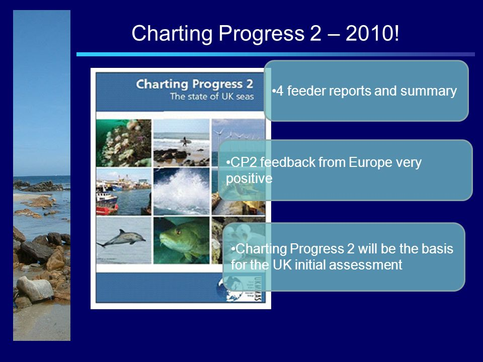 Charting Progress 2 – 2010.