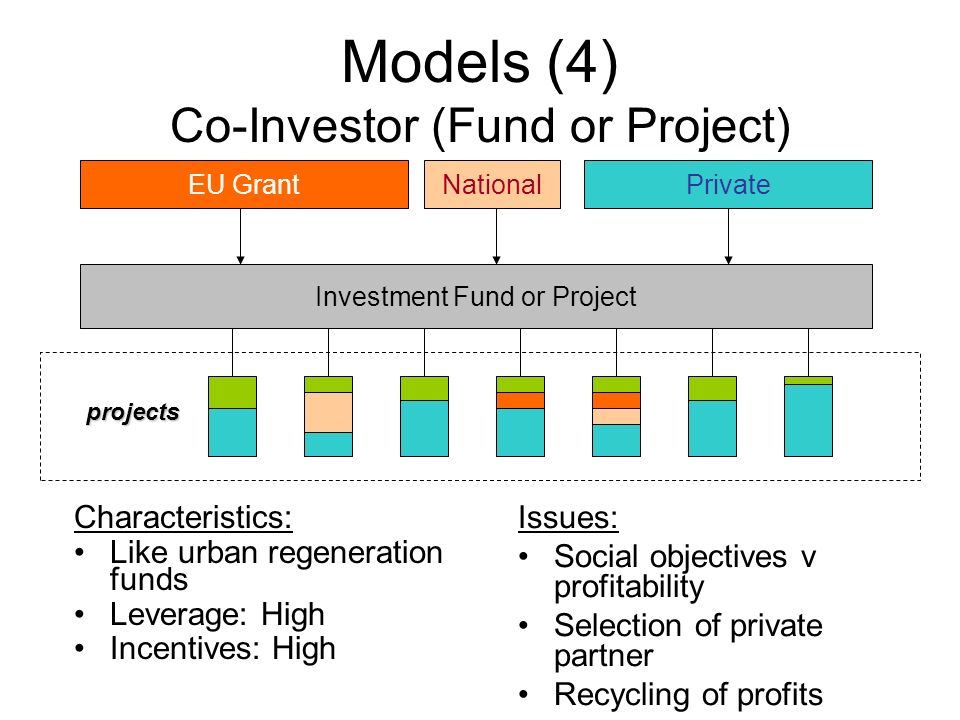 Models (4) Co-Investor (Fund or Project) Investment Fund or Project NationalEU GrantPrivate projects Issues: Social objectives v profitability Selecti