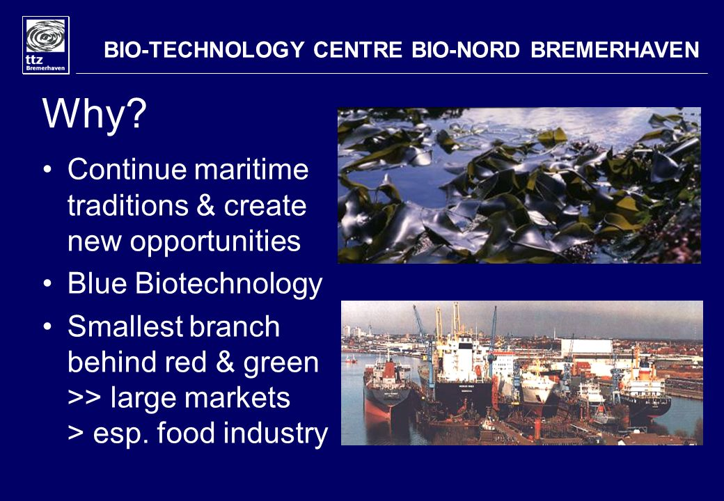 Why? Continue maritime traditions & create new opportunities Blue Biotechnology Smallest branch behind red & green >> large markets > esp. food indust