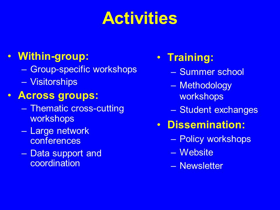 Activities Within-group: –Group-specific workshops –Visitorships Across groups: –Thematic cross-cutting workshops –Large network conferences –Data support and coordination Training: –Summer school –Methodology workshops –Student exchanges Dissemination: –Policy workshops –Website –Newsletter