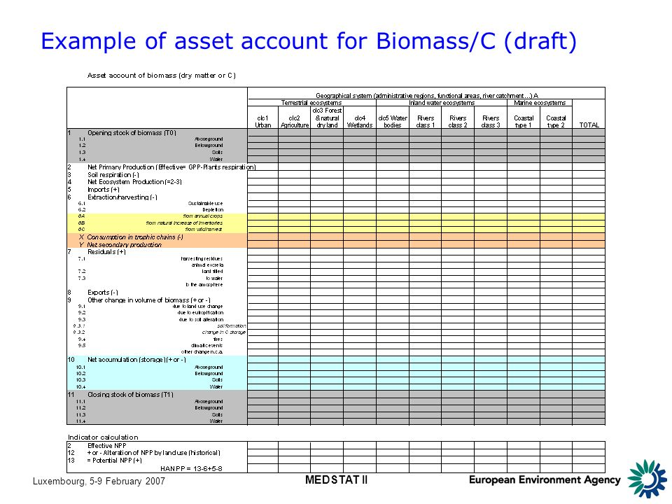 Luxembourg, 5-9 February 2007 MEDSTAT II Example of asset account for Biomass/C (draft)