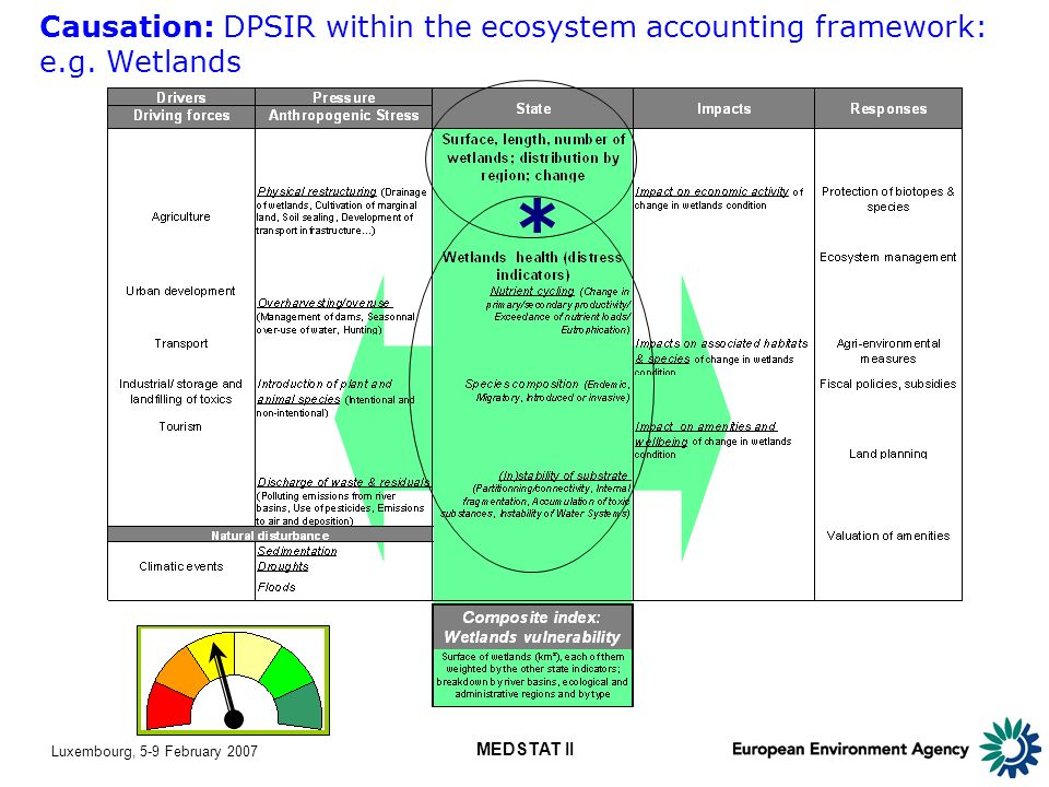 Luxembourg, 5-9 February 2007 MEDSTAT II Causation: DPSIR within the ecosystem accounting framework: e.g.