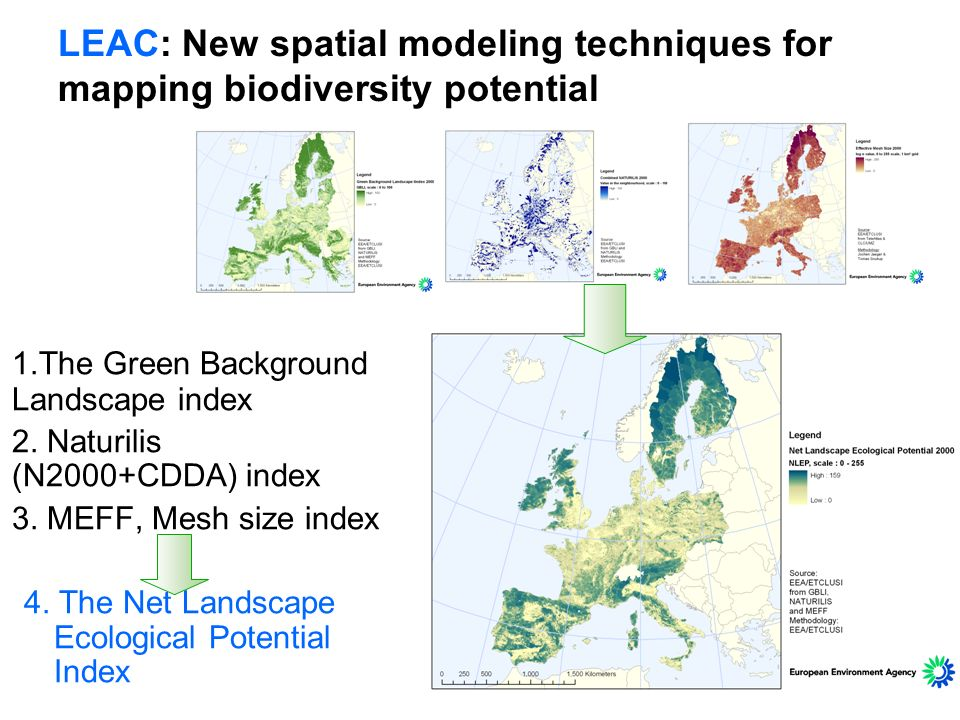 LEAC: New spatial modeling techniques for mapping biodiversity potential 1.The Green Background Landscape index 2. Naturilis (N2000+CDDA) index 3. MEF