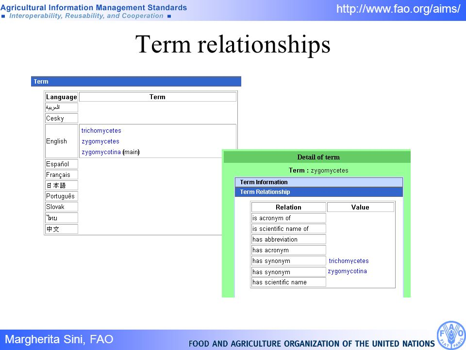 Margherita Sini, FAO 15/ http://www.fao.org/aims/ Term relationships