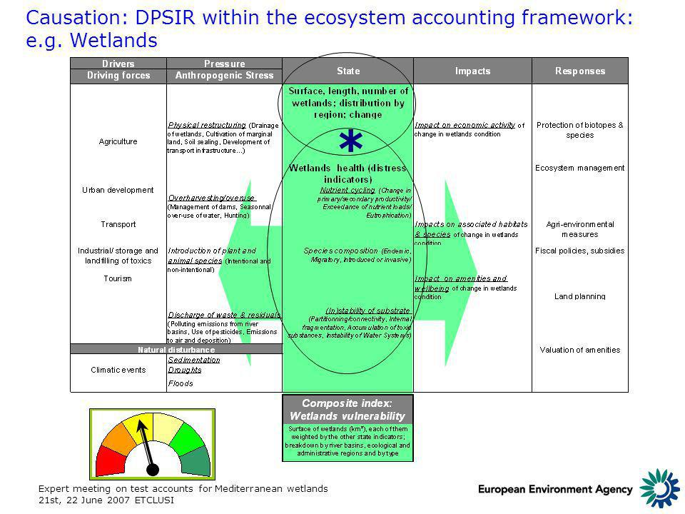 Expert meeting on test accounts for Mediterranean wetlands 21st, 22 June 2007 ETCLUSI Causation: DPSIR within the ecosystem accounting framework: e.g.