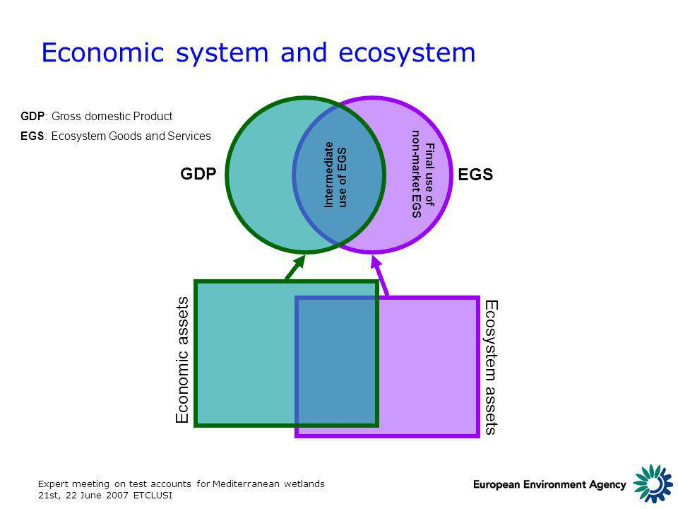 Expert meeting on test accounts for Mediterranean wetlands 21st, 22 June 2007 ETCLUSI Economic system and ecosystem EGS GDP Economic assets Ecosystem assets GDP: Gross domestic Product EGS: Ecosystem Goods and Services Intermediate use of EGS Final use of non-market EGS