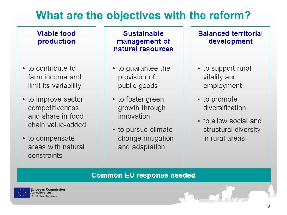 10 What are the objectives with the reform.