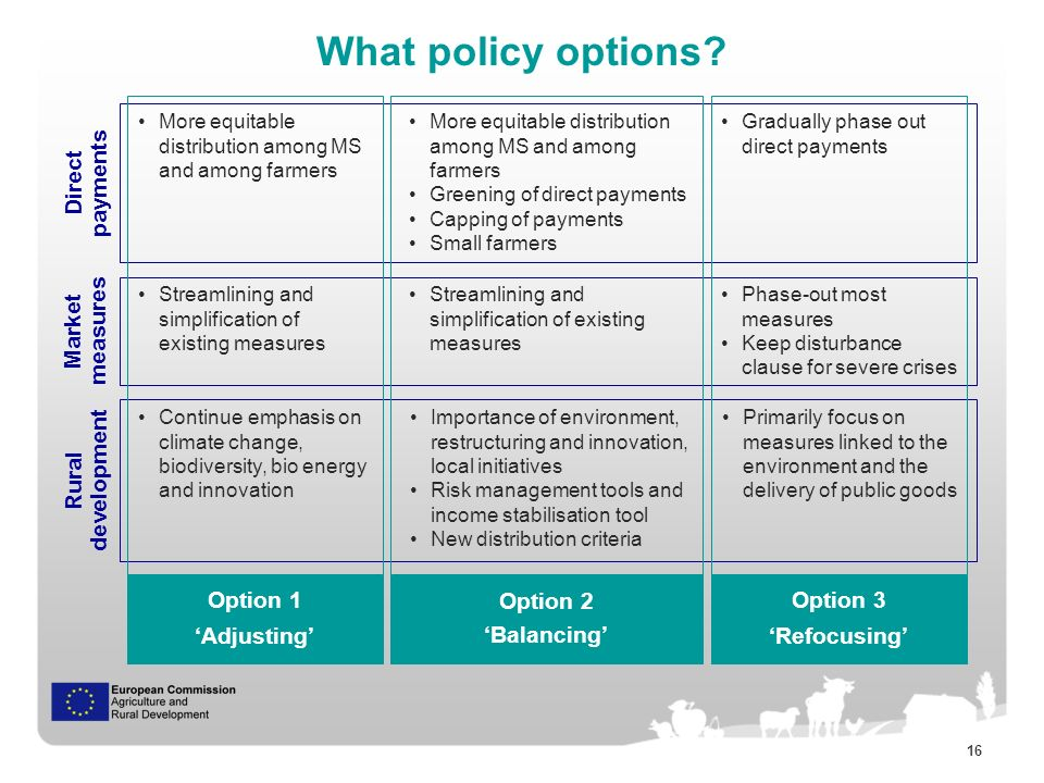 16 What policy options.