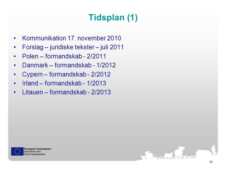 19 Tidsplan (1) Kommunikation 17.
