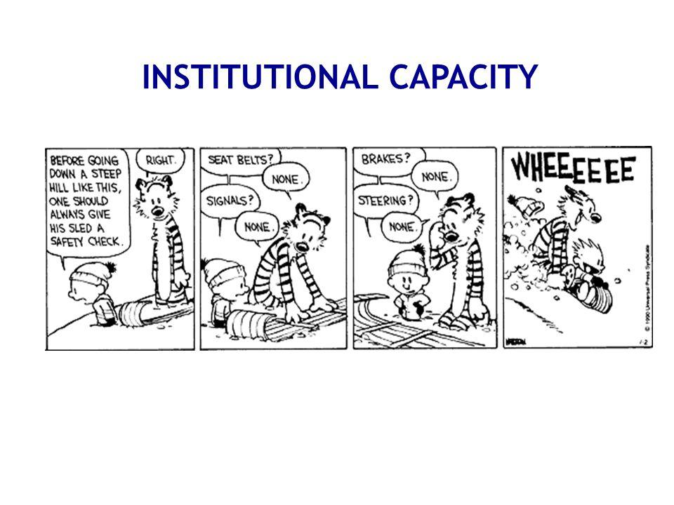 INSTITUTIONAL CAPACITY