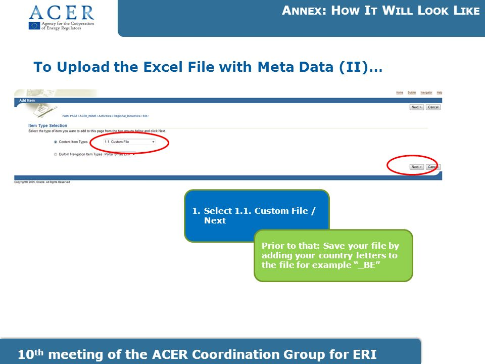 To Upload the Excel File with Meta Data (II)… A NNEX : H OW I T W ILL L OOK L IKE 10 th meeting of the ACER Coordination Group for ERI 1.Select 1.1.