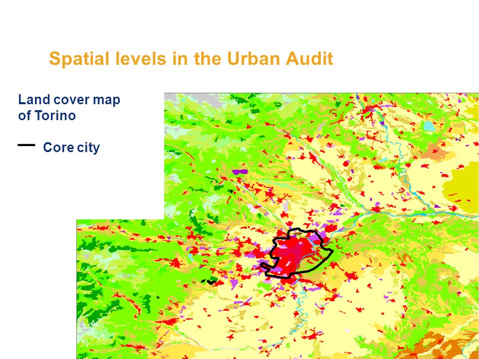 Spatial levels in the Urban Audit Land cover map of Torino Core city