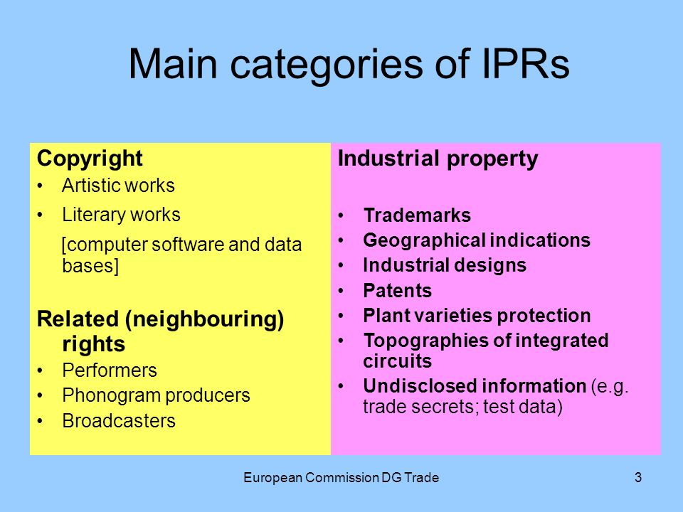 European Commission DG Trade3 Main categories of IPRs Copyright Artistic works Literary works [computer software and data bases] Related (neighbouring) rights Performers Phonogram producers Broadcasters Industrial property Trademarks Geographical indications Industrial designs Patents Plant varieties protection Topographies of integrated circuits Undisclosed information (e.g.