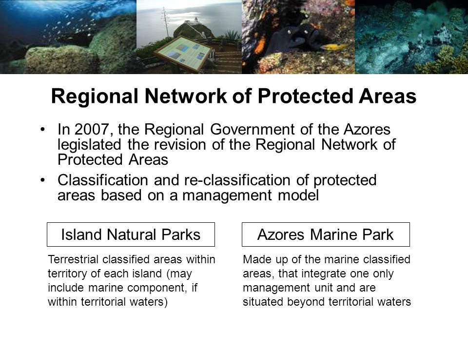 In 2007, the Regional Government of the Azores legislated the revision of the Regional Network of Protected Areas Regional Network of Protected Areas Island Natural ParksAzores Marine Park Classification and re-classification of protected areas based on a management model Terrestrial classified areas within territory of each island (may include marine component, if within territorial waters) Made up of the marine classified areas, that integrate one only management unit and are situated beyond territorial waters