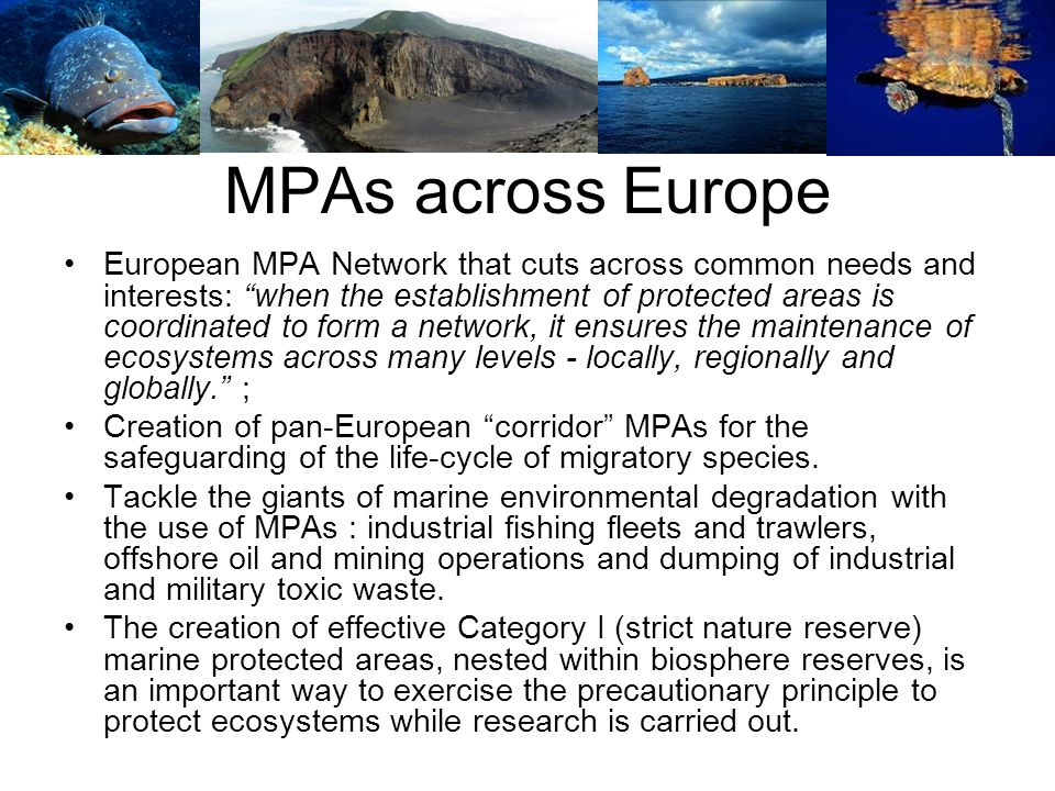 MPAs across Europe European MPA Network that cuts across common needs and interests: when the establishment of protected areas is coordinated to form a network, it ensures the maintenance of ecosystems across many levels - locally, regionally and globally.