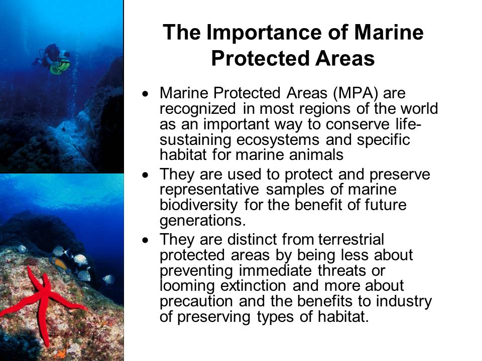 The Importance of Marine Protected Areas Marine Protected Areas (MPA) are recognized in most regions of the world as an important way to conserve life- sustaining ecosystems and specific habitat for marine animals They are used to protect and preserve representative samples of marine biodiversity for the benefit of future generations.