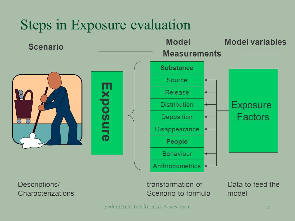 Federal Institute for Risk Assessment13 Needs for Consumer Exposure Estimation §Source data Weight fraction (amount) of substance in the product Releases Amount of residual monomers Use data Frequencies Durations