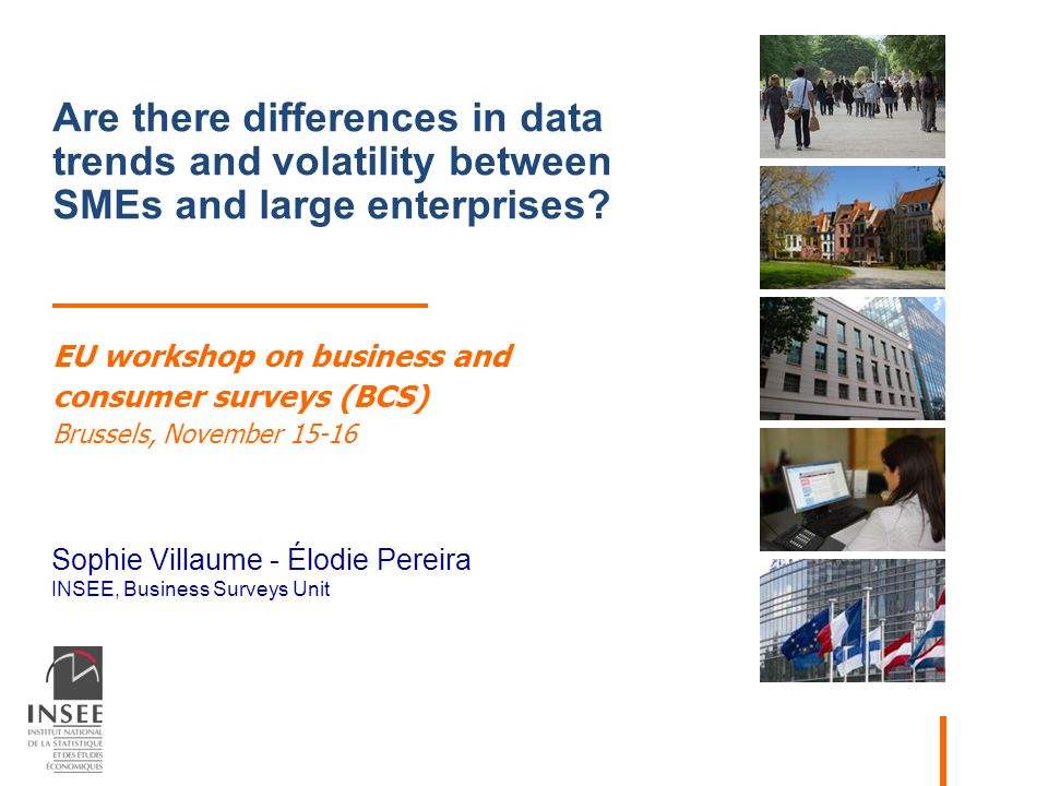 Sophie Villaume - Élodie Pereira INSEE, Business Surveys Unit Are there differences in data trends and volatility between SMEs and large enterprises.