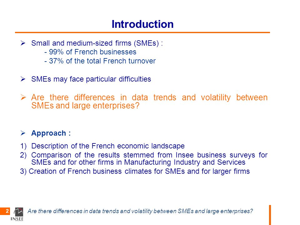 Are there differences in data trends and volatility between SMEs and large enterprises? 2 Introduction Small and medium-sized firms (SMEs) : - 99% of