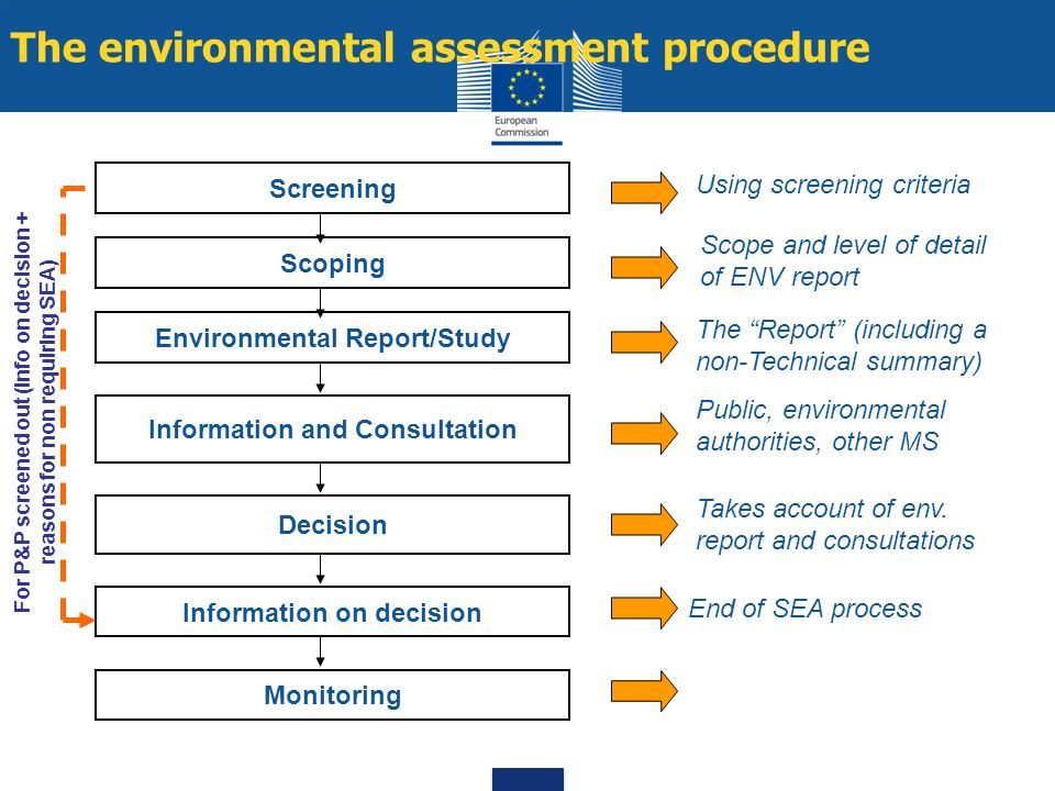 The environmental assessment procedure Scoping Decision Information on decision Environmental Report/Study Screening Information and Consultation Moni